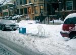 Winter_dibs.William_Selman_photo_on_Flickr